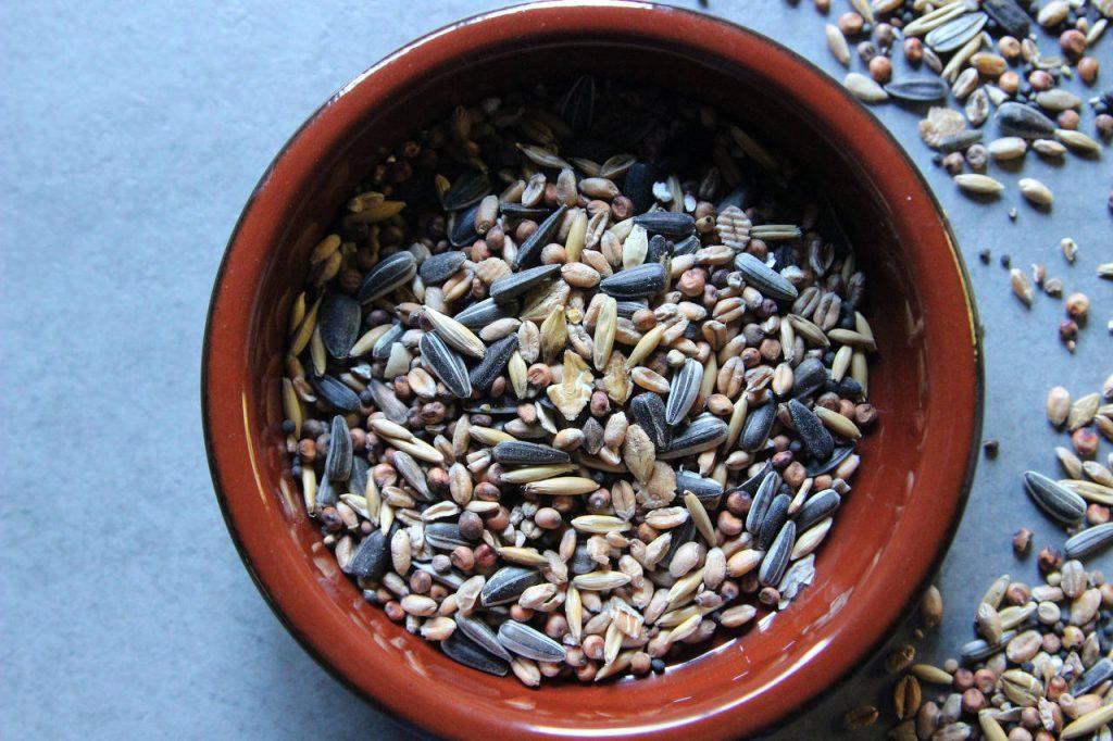 Calorie seme girasole